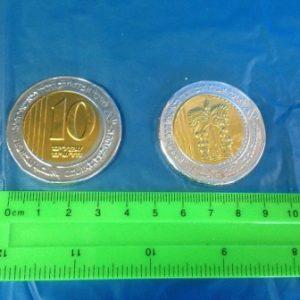 מטבעות שוקולד ענקיות 10 ש''ח | מטבעות שוקולד בזול