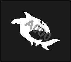 קעקוע כריש | קעקוע זמני | שבלונה דגם 196