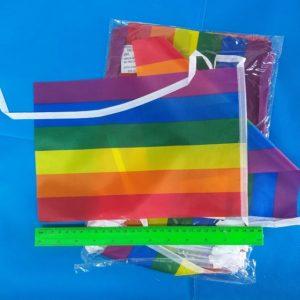 דגל הגאווה שרשרת 5 מטר | אביזרים למסיבות