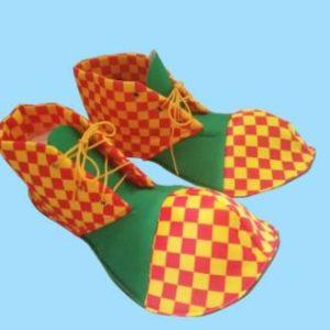 נעליים לליצן | נעלי ליצן | נעלי ליצן תחפושת