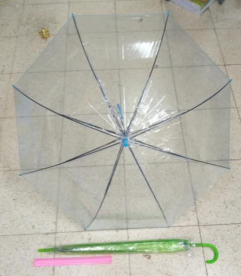 מטריות בצבע כחול שקוף   מטרייה שקוף 21 אינצ'