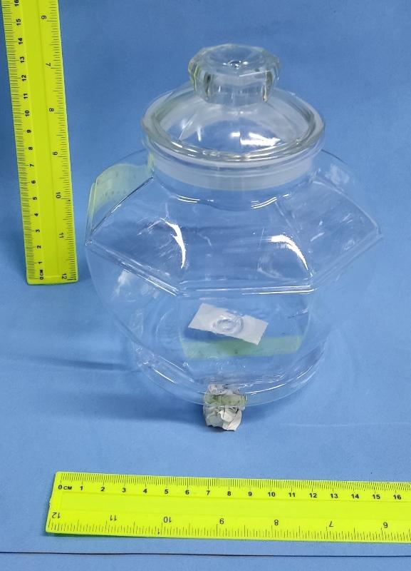 קערה לעיצוב   צנצנת פלסטיק שקוף מהודר   מתומן קוד 7998